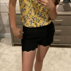 LOFT Shorts - LOFT Scalloped shorts
